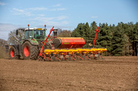 AD Maize drilling